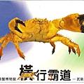 C0485_明信片_澎湖螃蟹博物館_深海武裝蟹