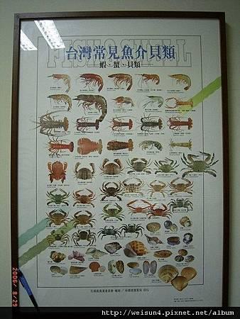 C0670_海報_台灣常見魚介貝類(台灣省漁業局)