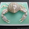 C1846_標本_玉蟹