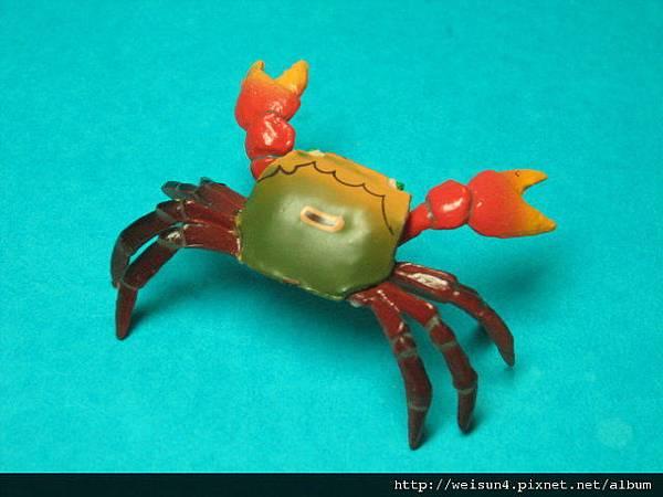 350_C0885_紅螯螳臂蟹_169