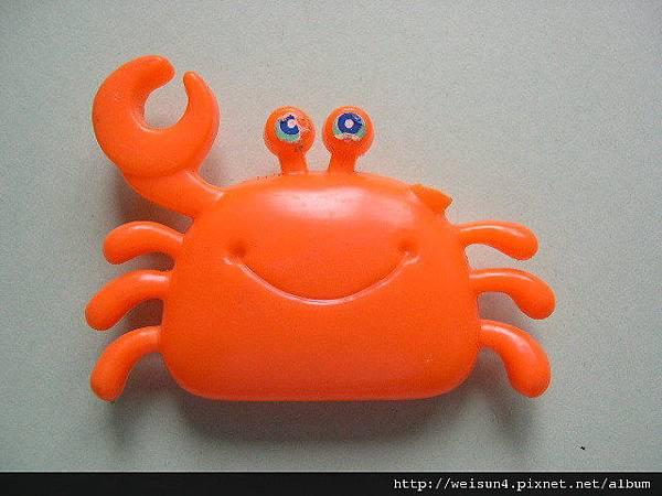 C0010_斷螯橘色螃蟹