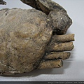 C1033_化石螃蟹_印尼_2