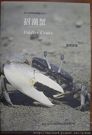 C0518_招潮蟹_施習德