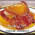 030_C1535_蛙蟹科_蛙形蟹