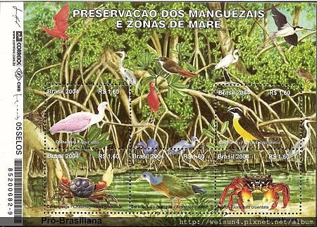 C0331_巴西鳥類蟹類_2004