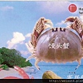 050_C1763_饅頭蟹科_逍遙饅頭蟹