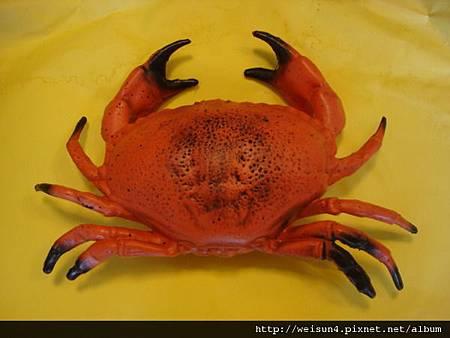 C1096_螃蟹模型_黃道蟹