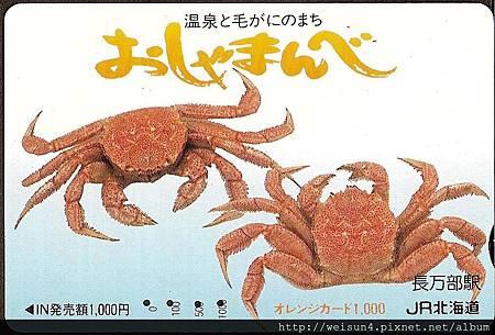 070_C1529_近圓蟹科_伊氏毛甲蟹