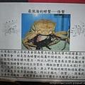 IMG_4562_怪蟹