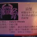 IMG_4587_字紋弓蟹