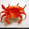 C0806_摺紙螃蟹