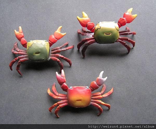 350_紅螯螳臂蟹_201202