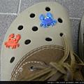 行_C0747_CROCS鞋釦_螃蟹