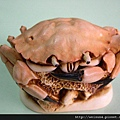 首飾_盒_C0057_Harmony Kingdom_Brean Sands Crab