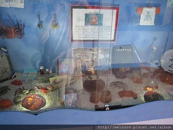 IMG_4615_螃蟹收藏