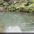 DSCN4761_水池