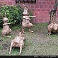 DSCN4061_迎賓兔