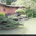 DSCN4115_南園水塘+松樹