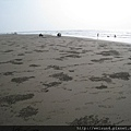 新月沙灘_IMG_7802_擬糞