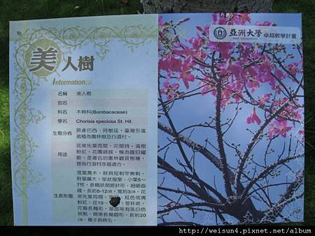 IMG_1309_亞洲大學_美人榭_看板