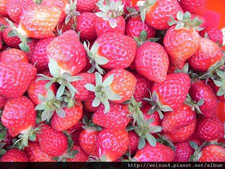 DSCN8372_草莓