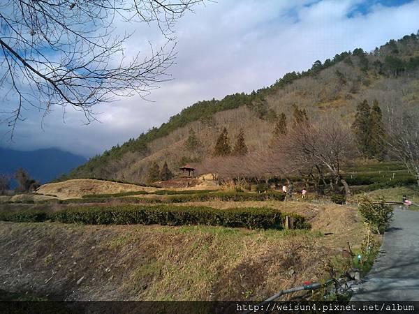 武陵_WP_001450_農莊文物館.jpg