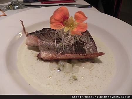 米其林_橘園餐廳_DSCN9340_鱸魚義式燉飯佐龍蒿奶油醬
