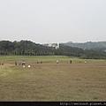青青草原_DSCN1649_青青草原.JPG