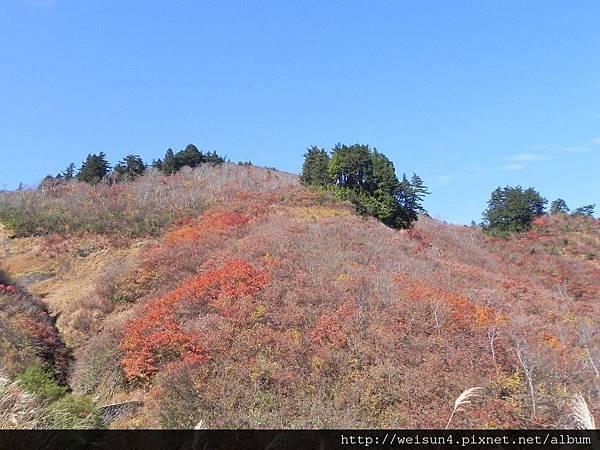 北陸_DSCN0893_白山_三方岩.JPG