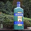 DSCN0408_BECHEROVKA_冰爵.JPG