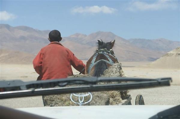 DSCF0026拉著驢子一起跑.JPG