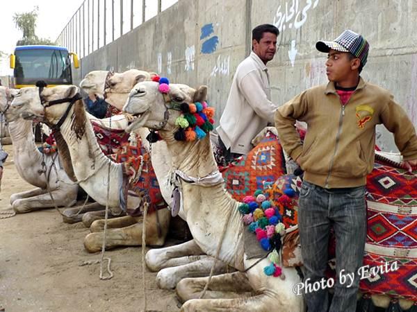 20100218騎駱駝02.jpg