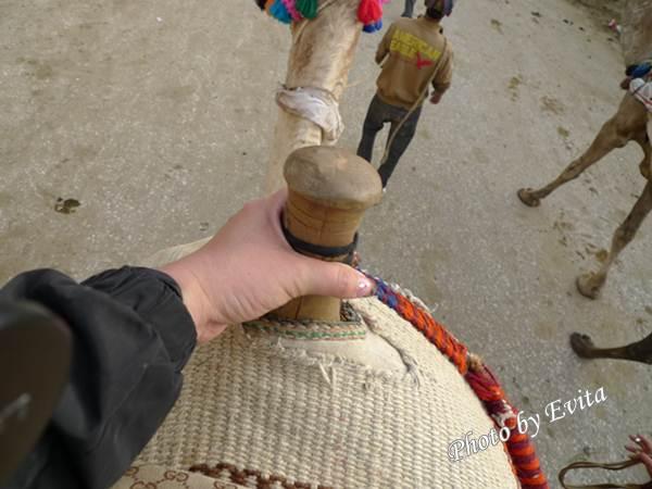 20100218騎駱駝05.jpg