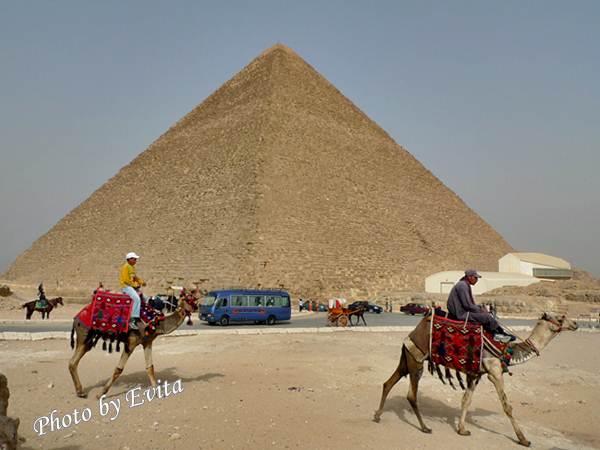 20100218騎駱駝06.jpg