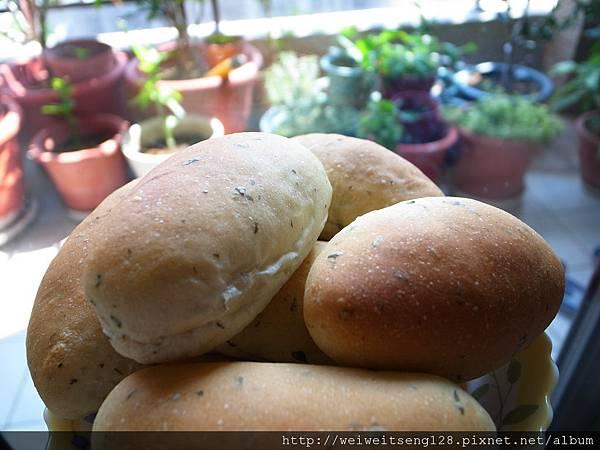 義式香料麵包-4