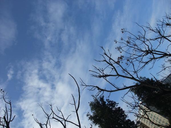 林口的天空真的很美阿