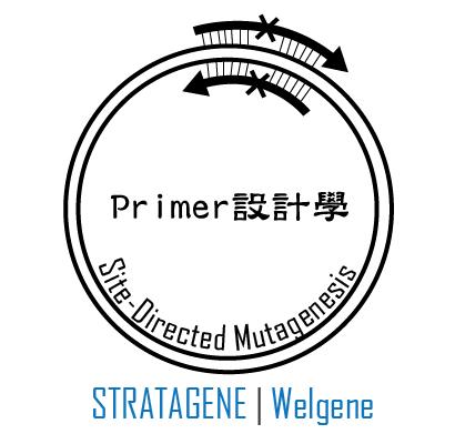 點突變 mutagenesis primer 設計