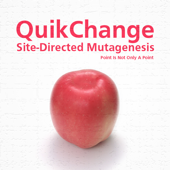 Mutagenesis-square