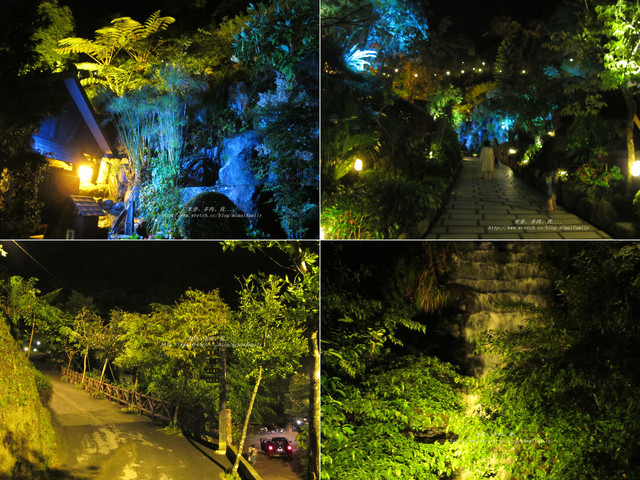 00051-10《20120512-花岩山林 》