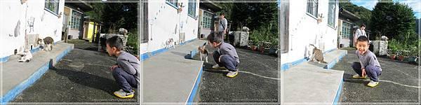 00067-11《侯硐貓村。碩仁國小》