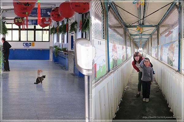 00067-06《侯硐貓村。碩仁國小》