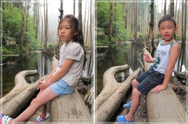 00073-15《2013暑期旅遊之溪頭好好玩》.jpg
