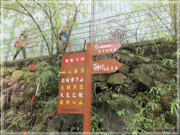 00073-12《2013暑期旅遊之溪頭好好玩》.JPG