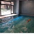 tn_20160823 swimming.jpg