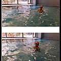 tn_20160823 swimming-1.jpg