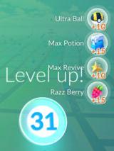 P_Level 31