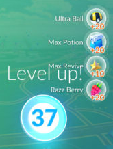 P_Level 37