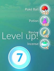 P_Level 7