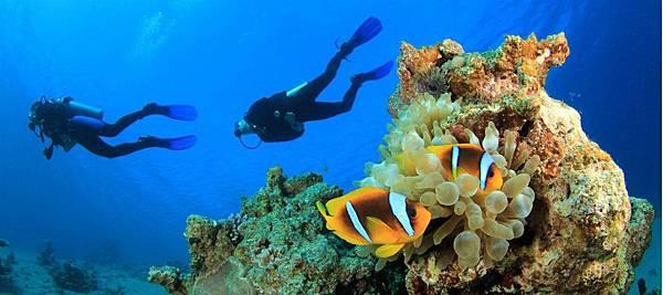 jumeirah-dhevanafushi-diving-hero