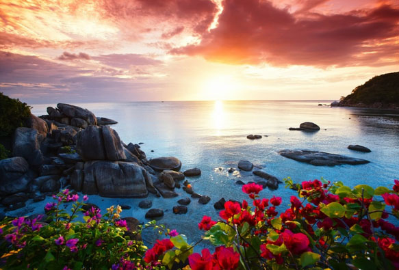 蘇美島自然純樸